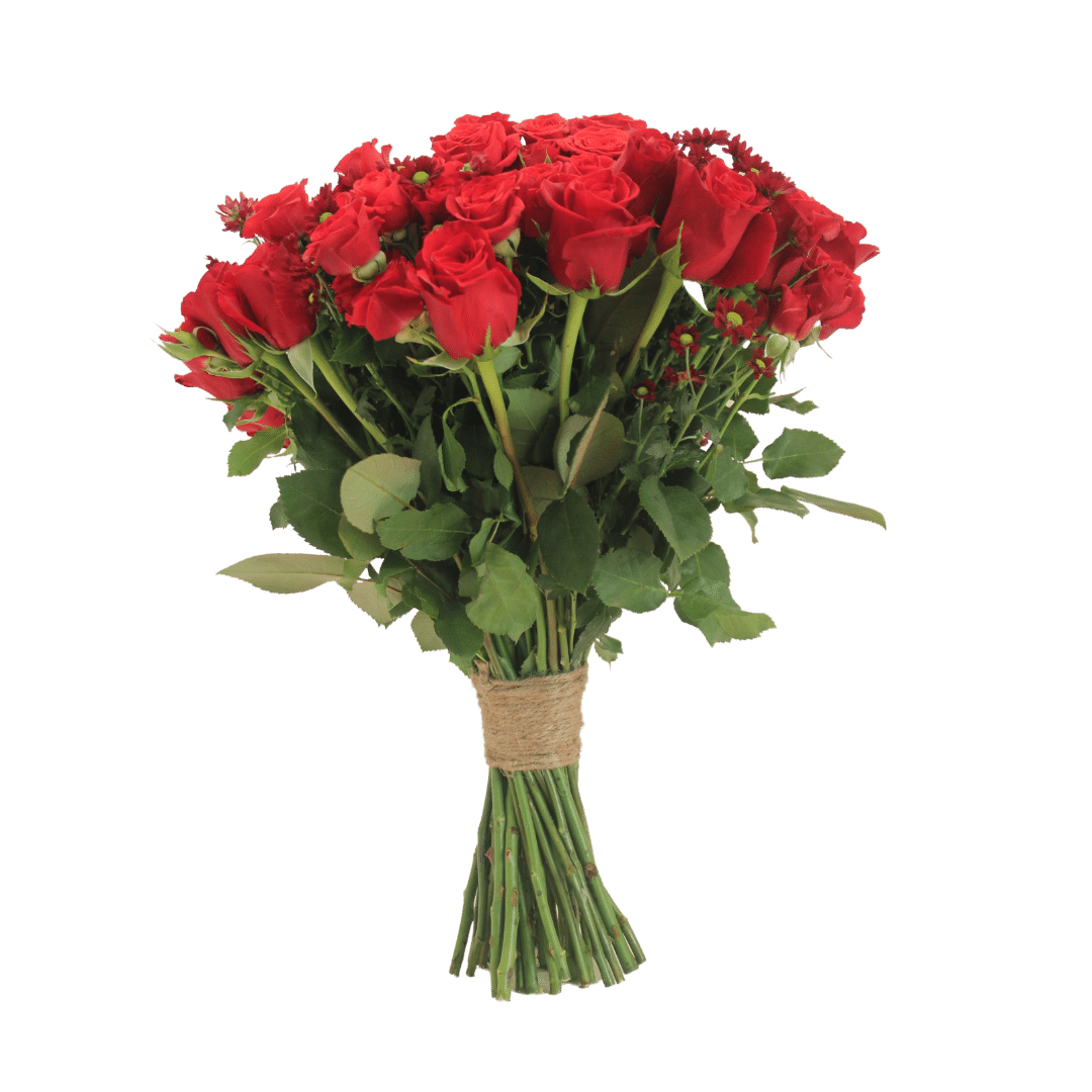 Rosy Flowers