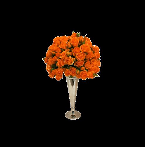 Baby Rosa - Orange Flowers